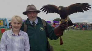 Banner falconry