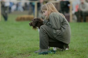 Banner gundog scurries