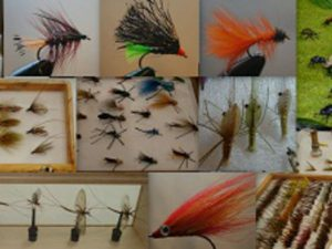 blurb pendle fly dressers