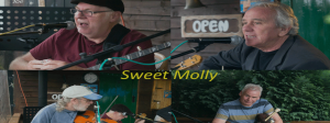 Sweet Molly Banner